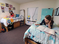 Two students studying on their beds in a traditional-style residence hall room.