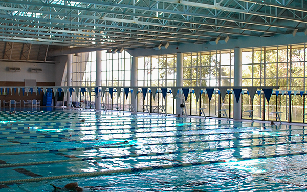 A image of the pool and the giant window letting natural light flood in.