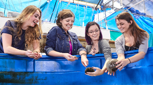 Dr. Alexis Janosik and three marine biology students