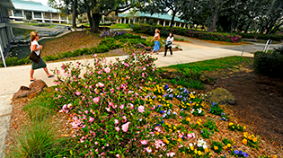 20110323_spring-campus-beauty_26